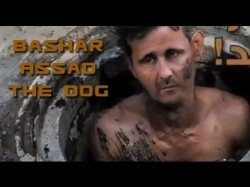 Bashar Al Kalb the Dog | Syria Situation