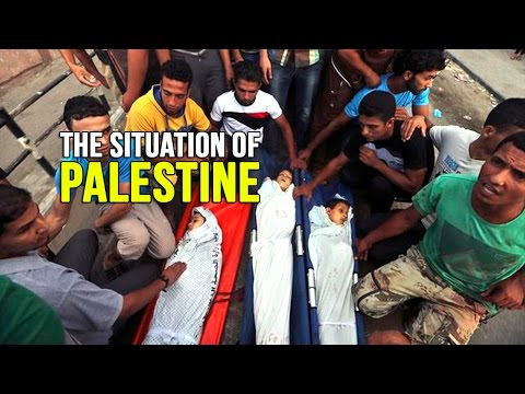 The Situation of Palestine – Feiz Mohammed