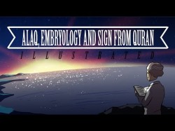 Alaq,Embryology and Signs from Quran | illustrated